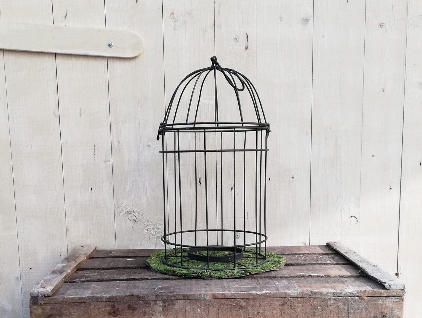 location d'une petite cage à oiseau pour décoration ou une de mariage proposée par esprit pop'up